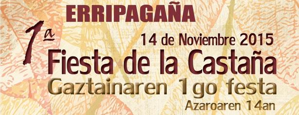 1_fiesta_castana_erripagana