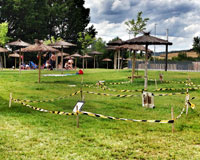 El césped de la Ciudad Deportiva de Sarriguren continúa empeorando su estado