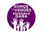 Somos Valle de Egüés presentará hoy una moción sobre el Instituto de Sarriguren